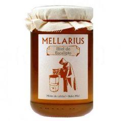 Miel de Eucalipto 500gr. Mellarius. 12 Unidades