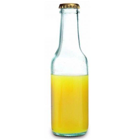 Botella Ginto 20cl. Comatec. 24un.