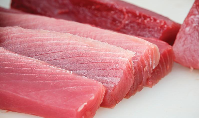 Ventresca y lomo de atún