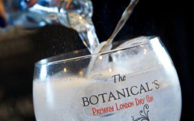 Tu gintonic perfecto de The Botanical's en 4 pasos