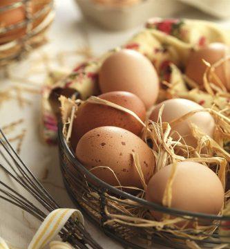 por-que-comprar-huevos-ecologicos